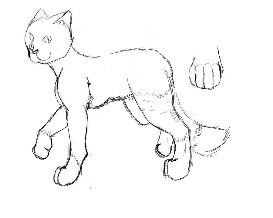 Cat WIP Practise for a little better anatomy by Lillyth-Kitten on ...