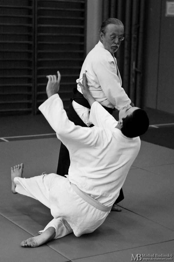 Aikido Ikeda-Dojo 21 by Yupa
