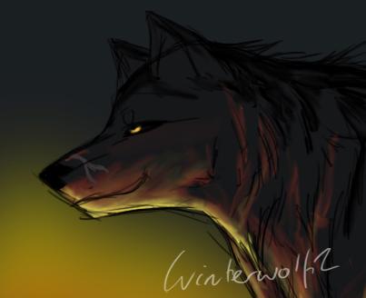 Winterwolf1's Artwork Burning_glow_by_winterwolf2-d3iwmou