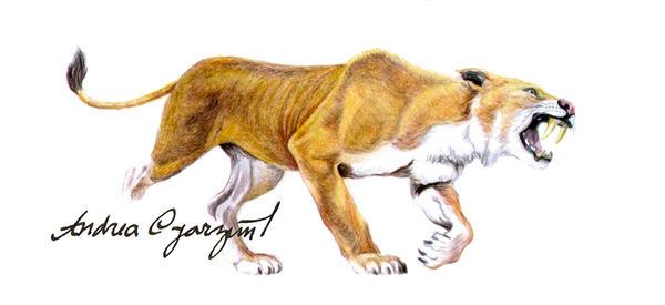 andrea-oyarzun's Profile Picture
