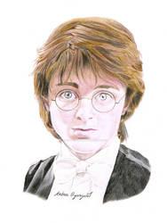 Harry Potter: terminado by andrea-oyarzun