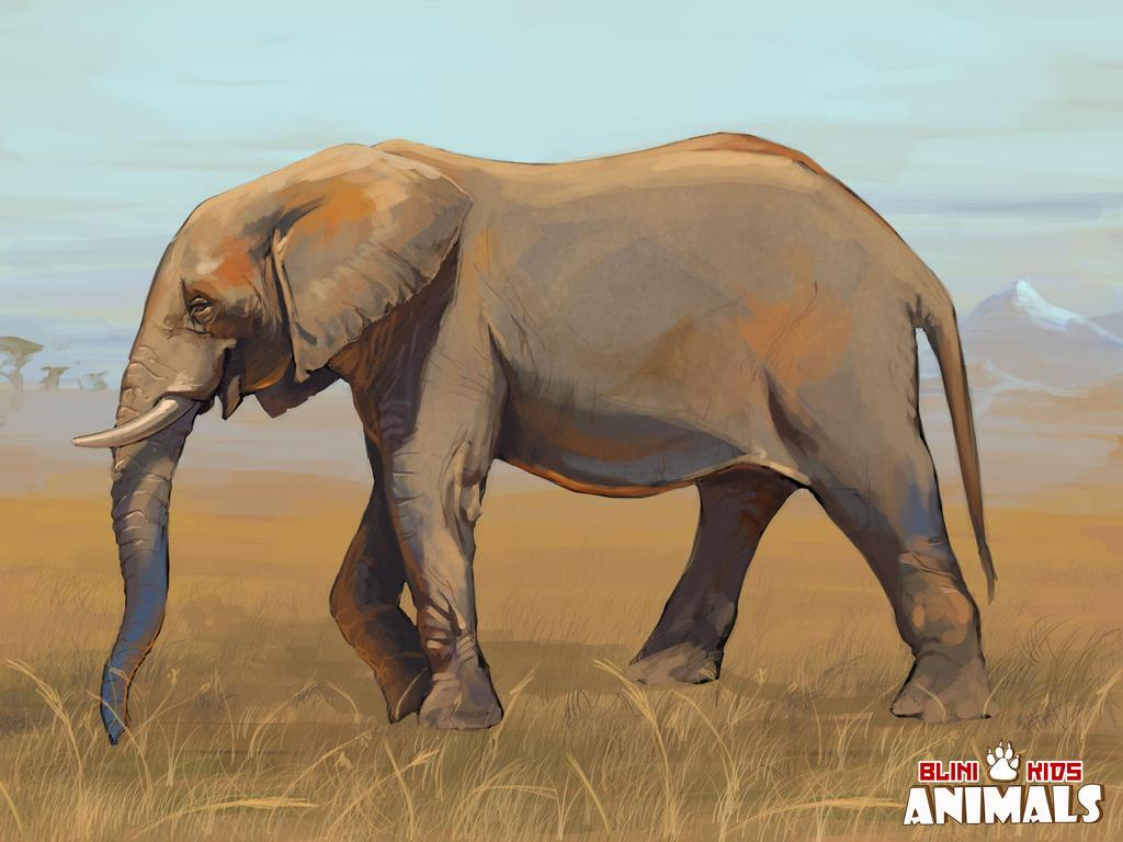 Elephant by LynxMB