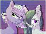 Limestone And Marble Pie