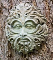 Garden Face I