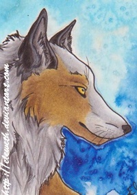 ACEO: Culpeo-Fox by Eleweth
