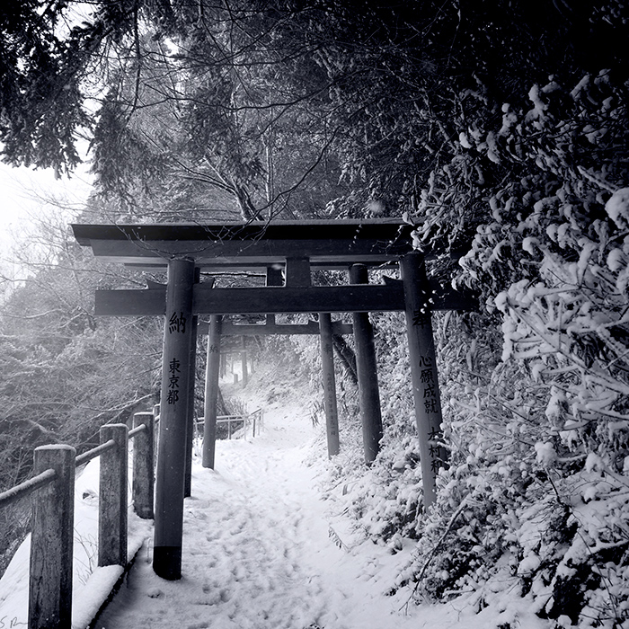 Pathway by heeeeman