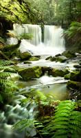 Russell Falls 1