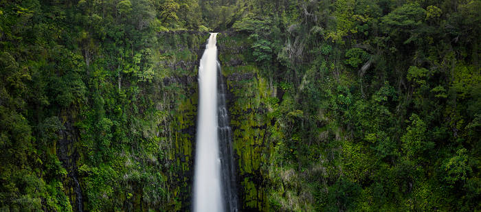 Akaka Falls 2