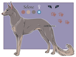 Domestic Jader- Selene [Raffle-CLOSED]