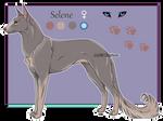 Domestic Jader- Selene [Raffle-CLOSED]