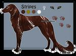 Domestic Jader- Stripes [Raffle-CLOSED]