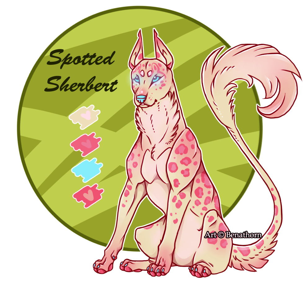 Imperial Jader- Spotted Sherbert [Auction- CLOSED]