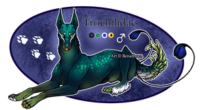 Feral Jader: Trochilidae [Auction- CLOSED]
