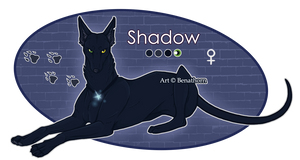 Feral Jader: Shadow [Auction- CLOSED]