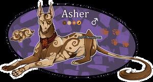 Domestic Jader- Asher [Bean- Grown]