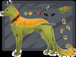 Domestic Jader- Malus [Bean- Grown]