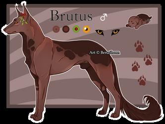 Domestic Jader- Brutus [Bean- Grown]