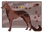 Domestic Jader- Brutus [Bean- Grown]