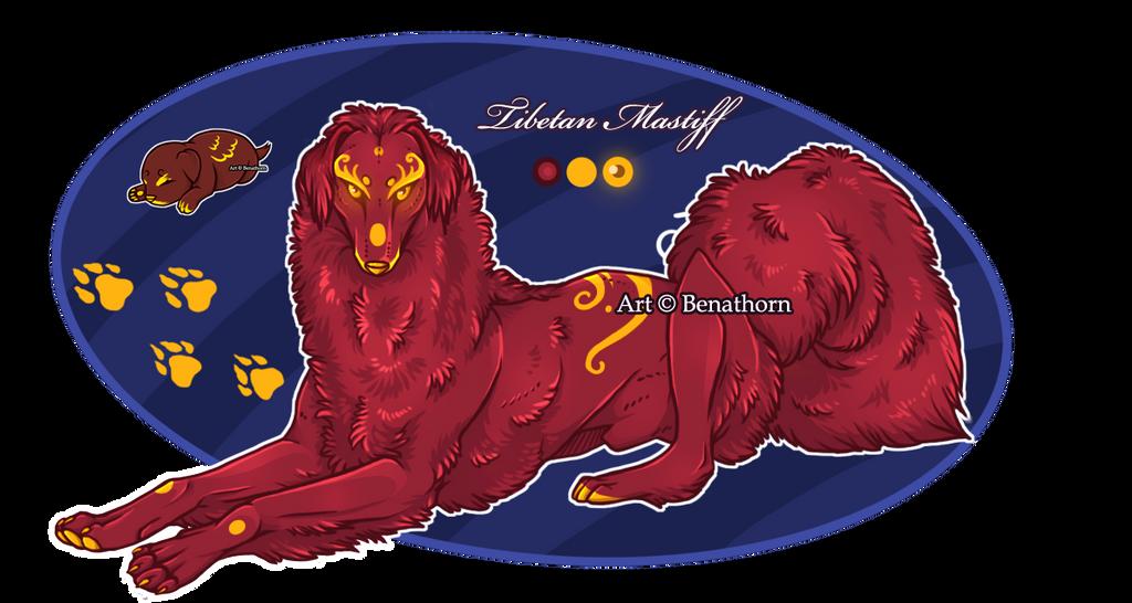 Imperial Jader- Tibetan Mastiff [Bean- Grown]