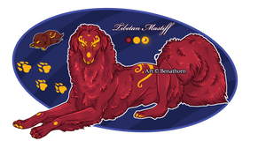 Imperial Jader- Tibetan Mastiff [Bean- Grown]