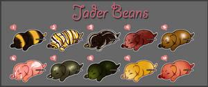 Bean Batch #17 (CLOSED)