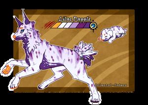 Domestic Jader- Lilac Dapple [Bean- Grown]