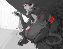 Monkey elder