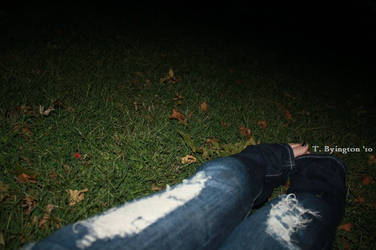 Our Night Leaves