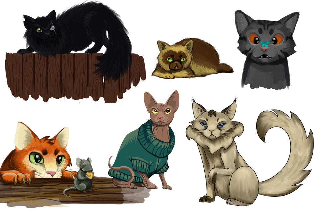 Funny Cats Design by daeris-art