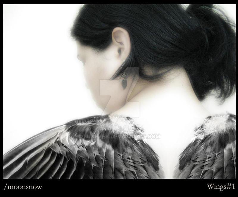 Wings1::Fallen Angel