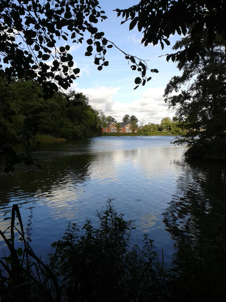 Whiteknights Lake by ICannotDrawToSaveMe