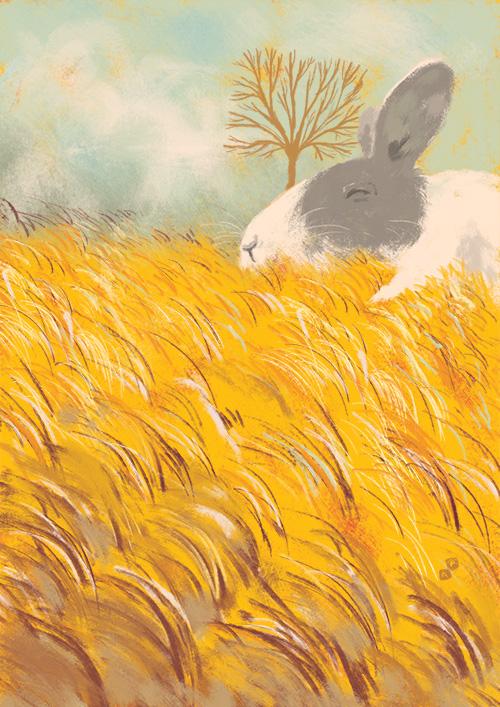 Sleeping Bunny by Aaron-Randy