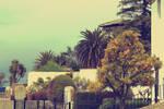 Moroccan Garden II