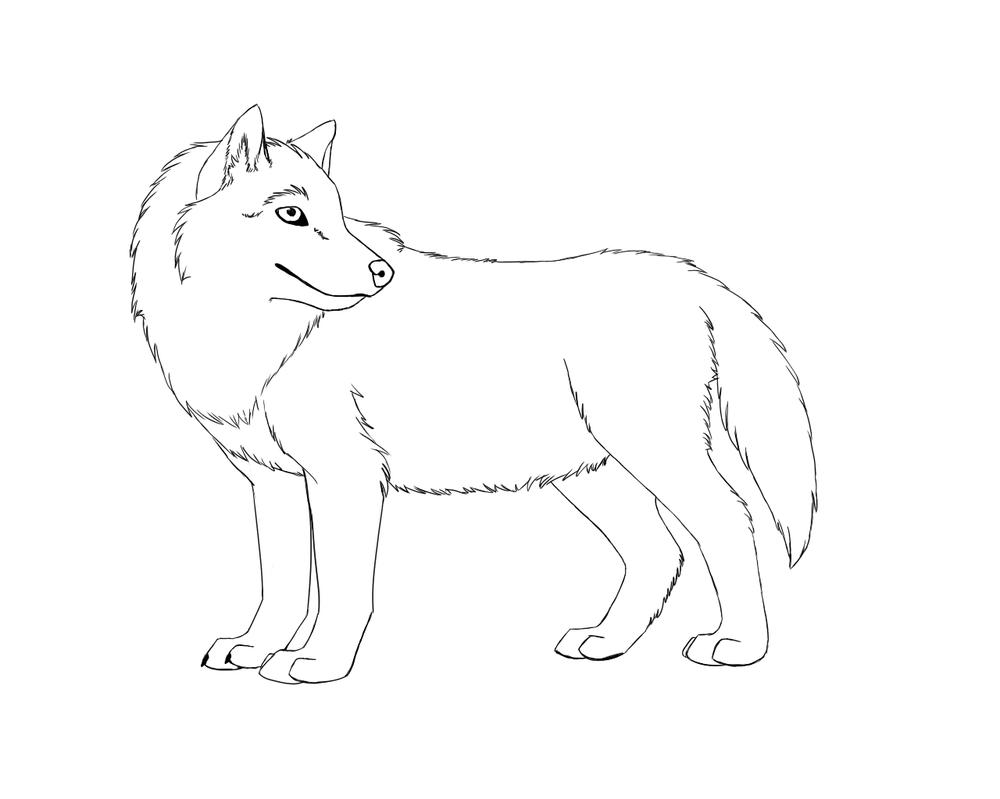 Wolf Line Art by nitalla