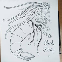 Mermay 2017: Blind Shrimp by skybearuk