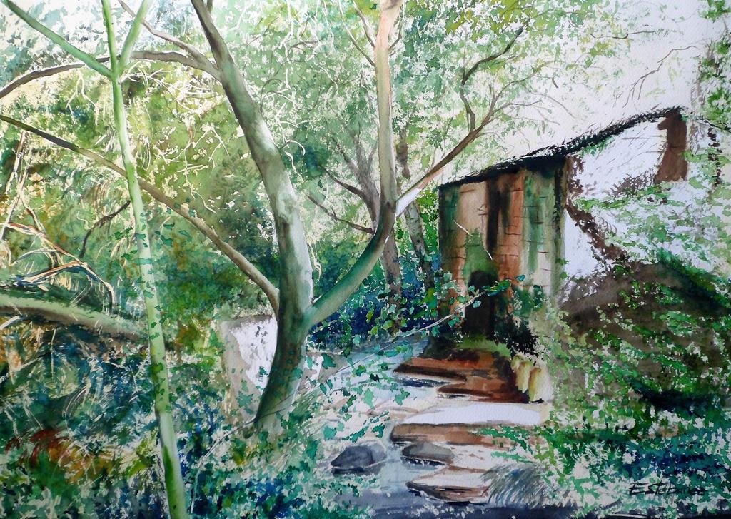 Molino en el bosque by DEstebanez