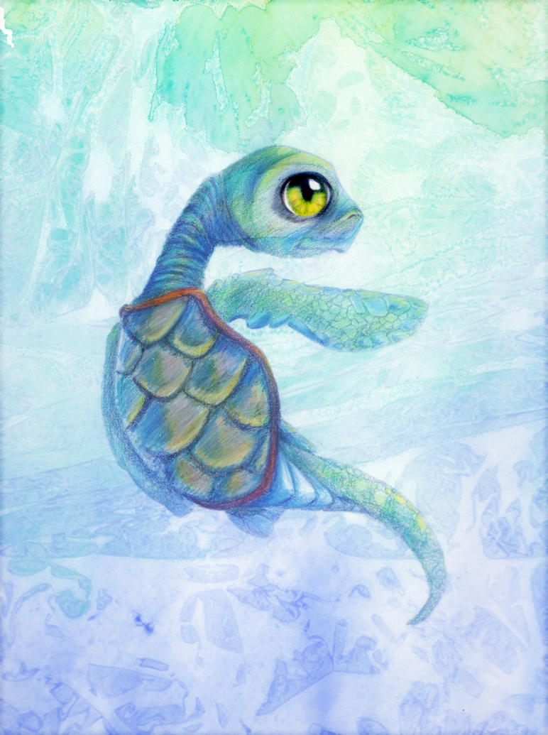 baby sea turtles drawings wallpapers background