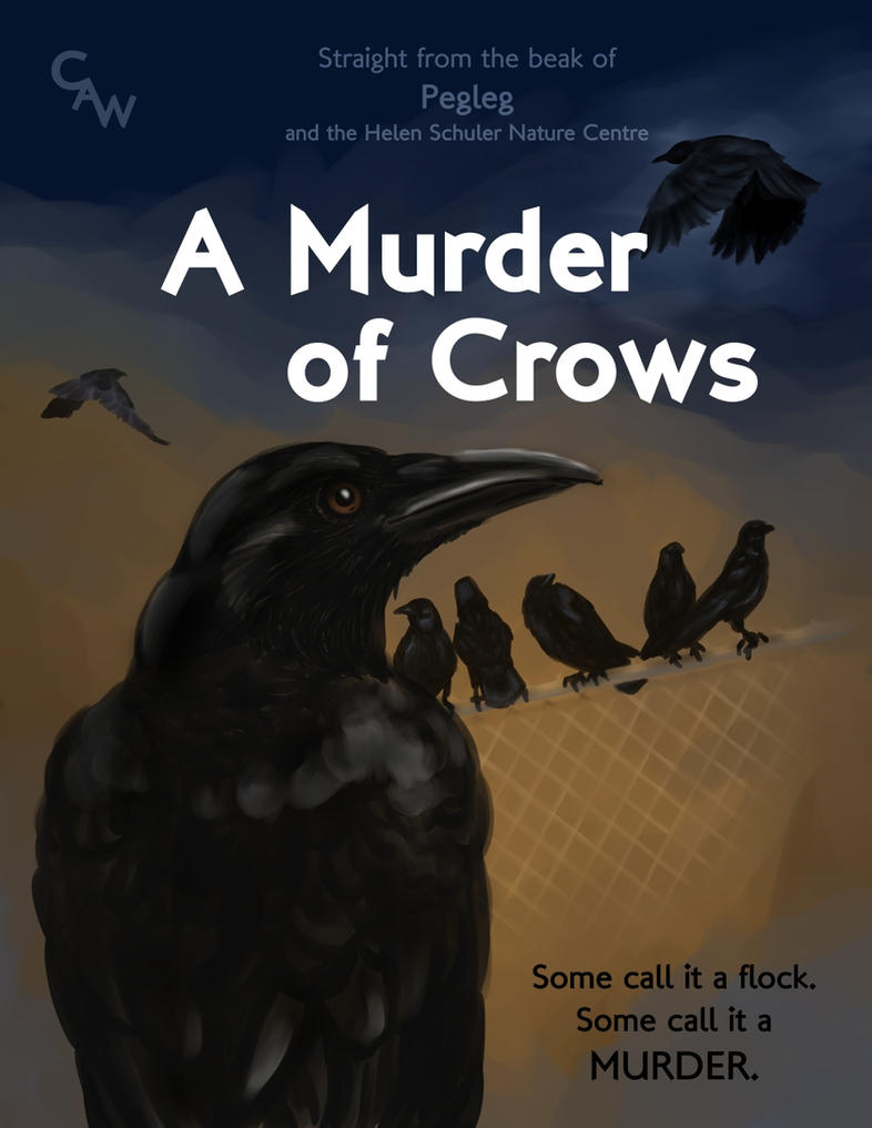 A Murder Cover by snowbringer