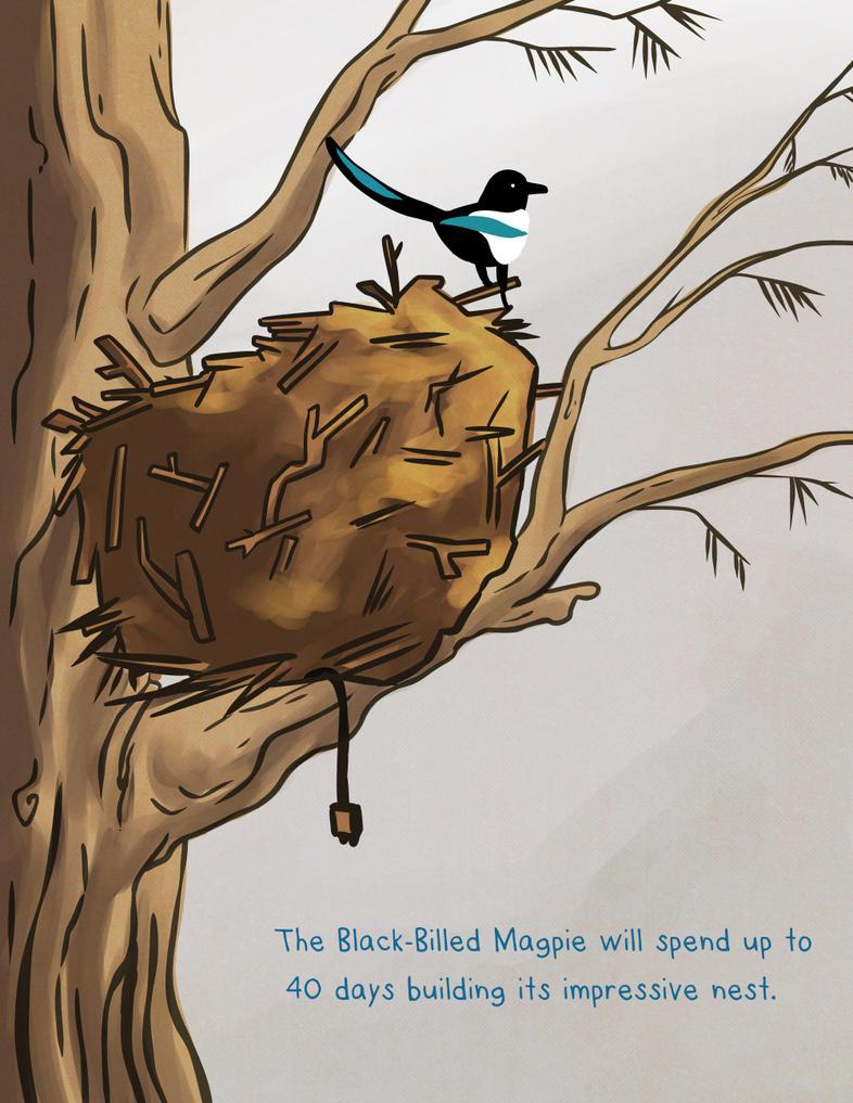 Magpie Nest by snowbringer