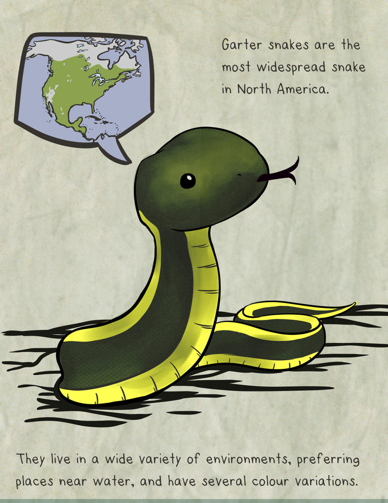 Garter Snake Fact Friday by snowbringer