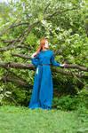 Medieval Fantasy Dress