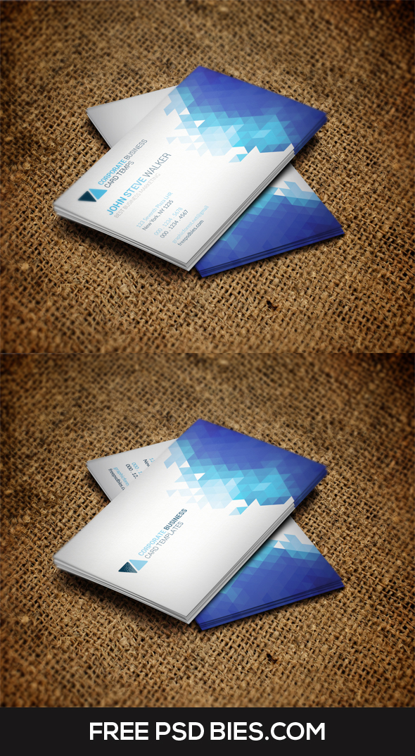 Clean Minimal Metro Style Business Card Template by Designhub719