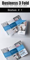 Tri Fold Business Brochure Bundle