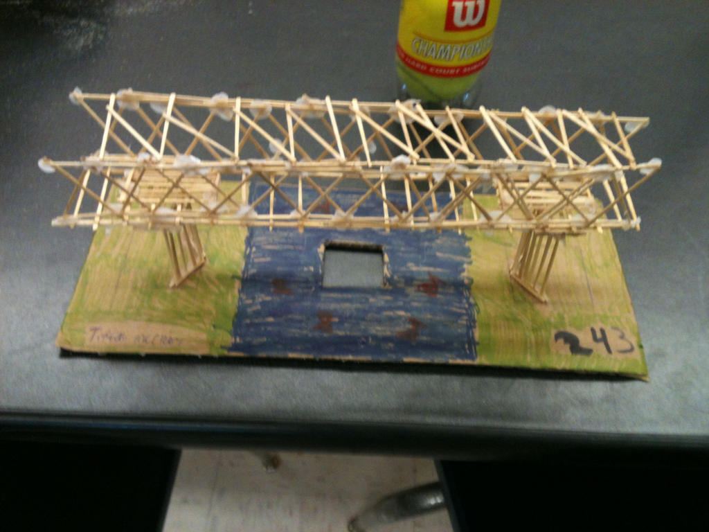 100 Toothpick Bridge
