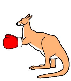 Kangaroo Boxing Gloves