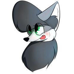 Grey the Gray Wolf