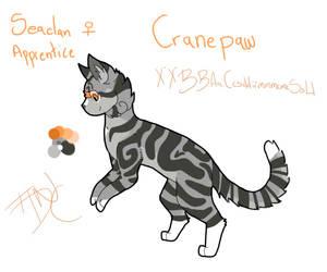 Cranepaw - apprentice by theydidnevercare