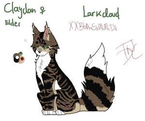 Larkcloud - elder by theydidnevercare