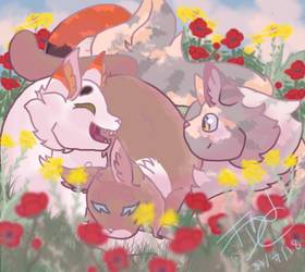 Poppies and mustards (pink version) by theydidnevercare