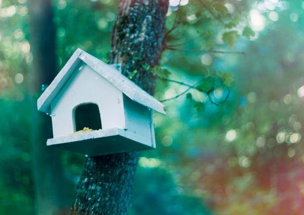 tree house by ioana-boroda
